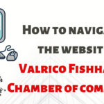 How Do I Navigate the FishHawk Valrico Chamber Website?